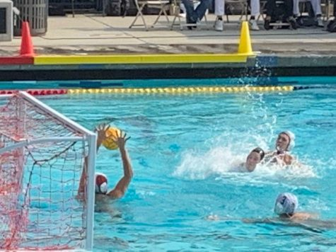 Edison Tiger Water Polo FAQs