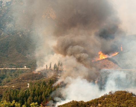 How Wildfires Affect Us and Our Health
